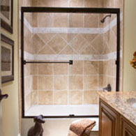 Shower Door and Panel